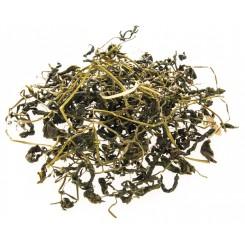 Jiaogulan čaj