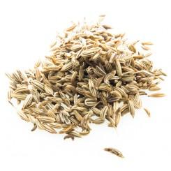 Koromač semena