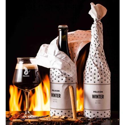 Pivo z začimbami WINTER warmer
